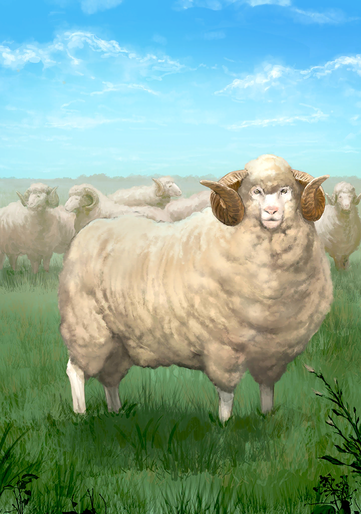 KF3 Sheep (Photo)+.png