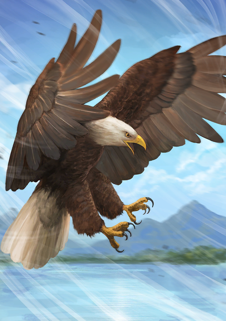 KF3 Bald Eagle (Photo)+.png