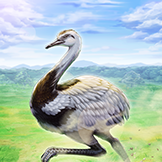 KF3 Greater Rhea (Photo)Thumb.png