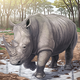 KF3 White Rhinoceros (Photo)Thumb.png