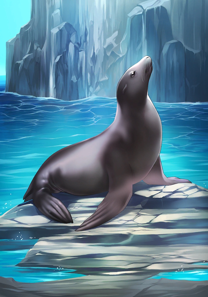 KF3 California Sea Lion (Photo).png
