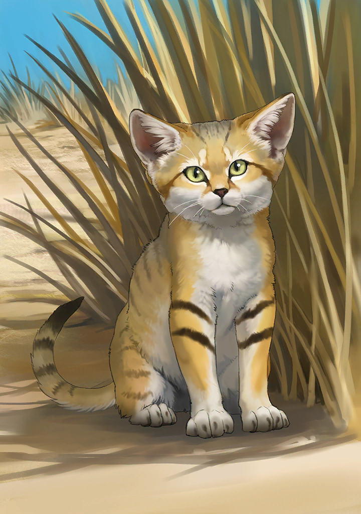 KF3 Sand Cat (Photo).png