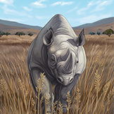 KF3 Black Rhinoceros (Photo)Thumb.png