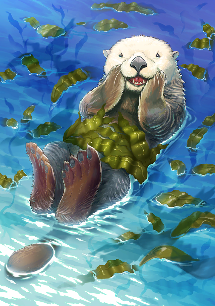 KF3 Southern Sea Otter (Photo)+.png
