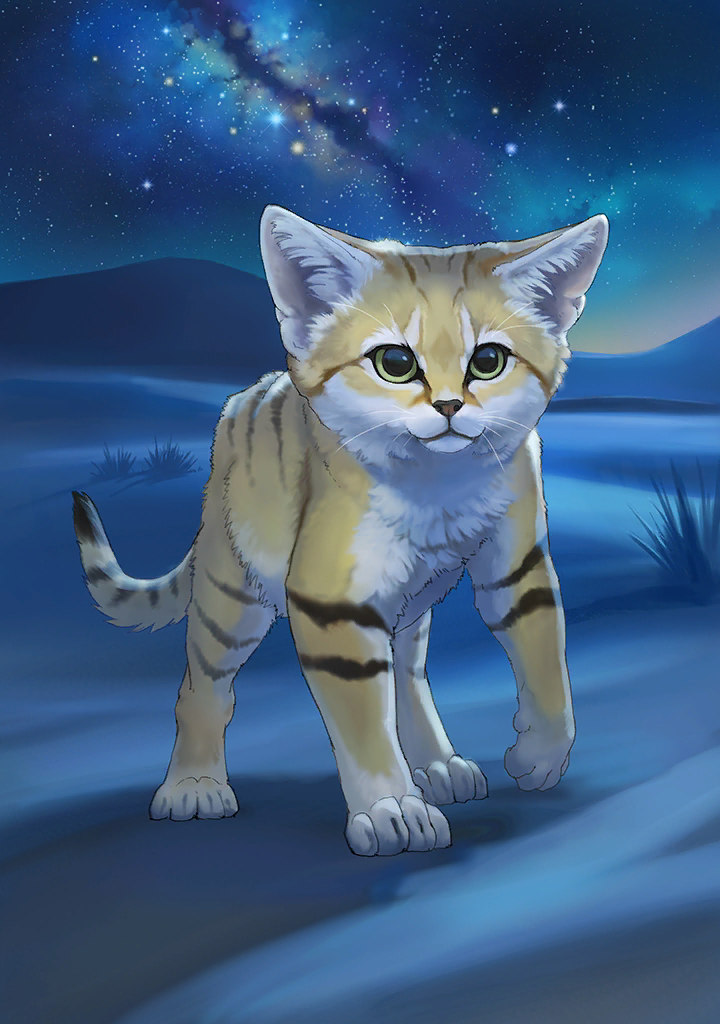 KF3 Sand Cat (Photo)+.png