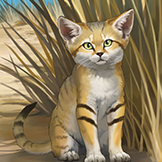 KF3 Sand Cat (Photo)Thumb.png