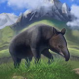 KF3 Mountain Tapir (Photo)Thumb.png