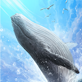 KF3 Blue Whale (Photo)Thumb.png