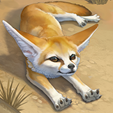 KF3 Fennec Fox (Photo)Thumb.png