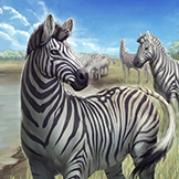 KF3 Chapman's Zebra (Photo)Thumb.png