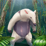 KF3 Southern Tamandua (Photo)Thumb.png